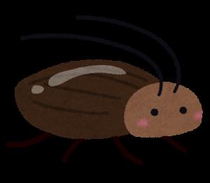 ゴキブリ1